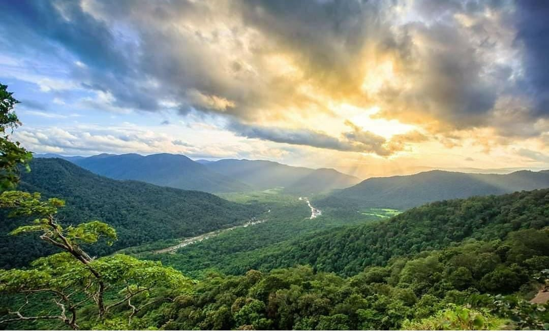 DEGRADATION OF FORESTS IN WESTERN GHATS DUE TO ANTHROPOGENIC ACTIVITIES, RESEARCH FROM IISc, IIT reveal